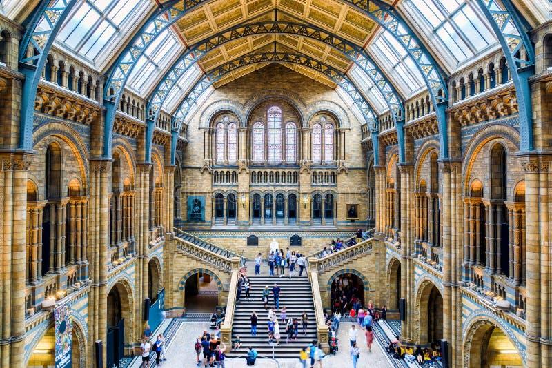 Hoofdzaal van het Biologiemuseum in Londen royalty-vrije stock afbeeldingen