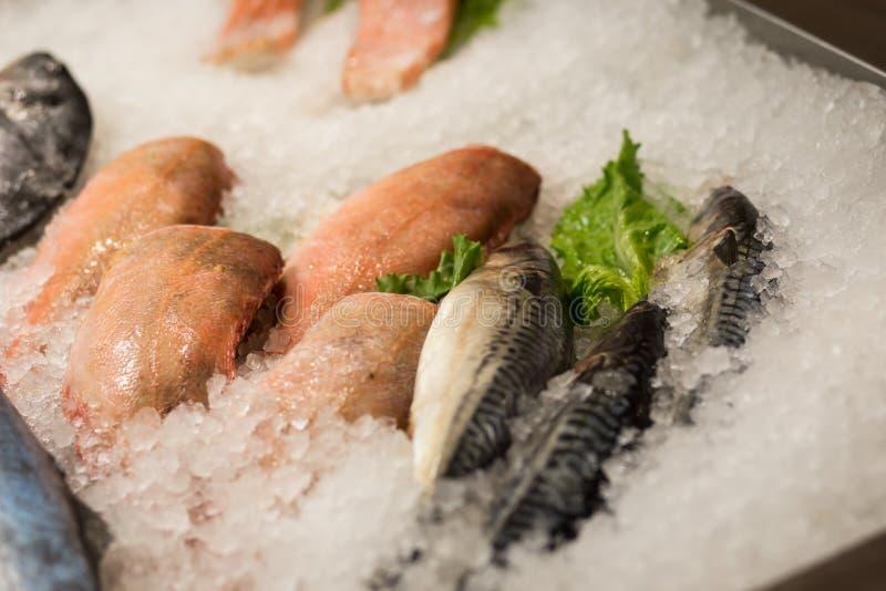 Hoog Hoekstilleven van Verscheidenheid van Ruwe Verse Vissen die op B koelen stock fotografie