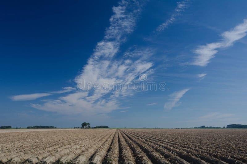 Hoogeland Groninga fotografie stock