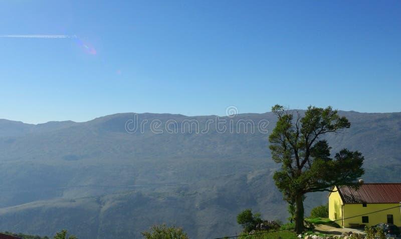 Hooggebergte, boom, boerderij Ochtend blauwe hemel stock foto