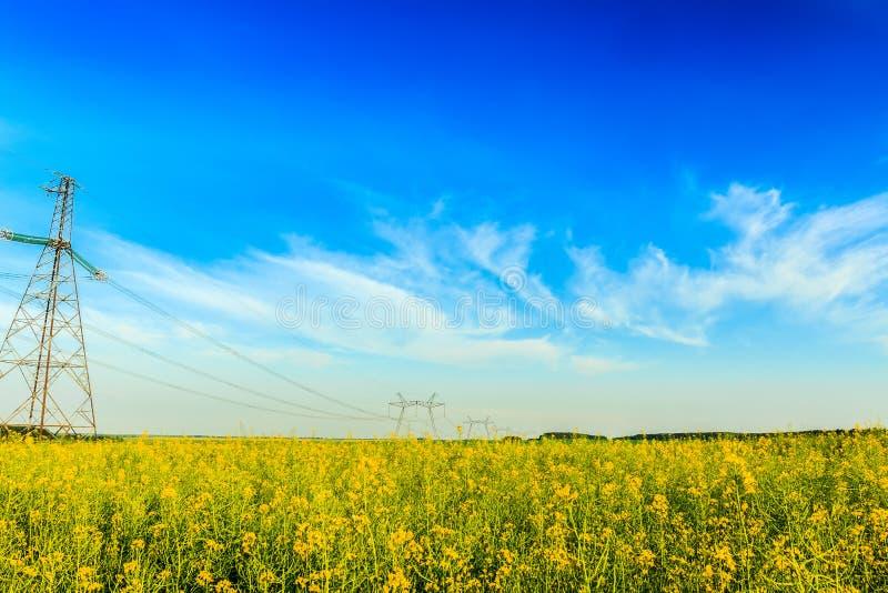 Hoogspanningspowerline op bloeiend raapzaadgebied stock afbeelding
