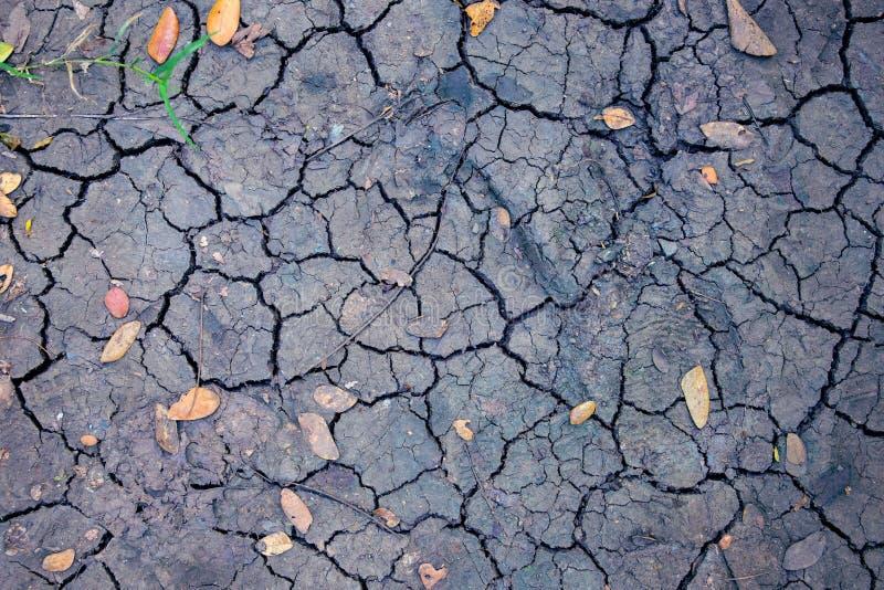 Hoogste de meningsfoto van het droogteland Droge grond met barst netto en gevallen gele bladeren Dorre landtextuur Zwarte gebarst stock afbeelding