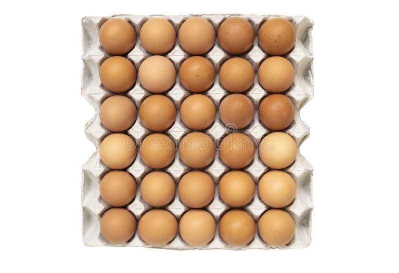Hoogste die mening van kippeneieren in document dienblad op witte backgro wordt geïsoleerd royalty-vrije stock foto's
