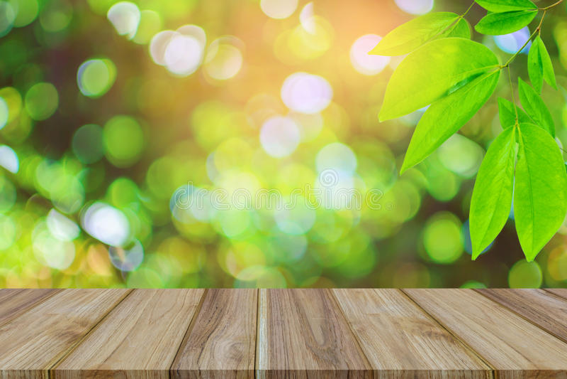 Hoogste lijst houten Groen bomen en bladgroen bokeh stock fotografie