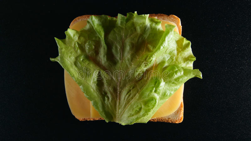 HOOGSTE MENING: Boterham met een kaas en een groen blad lattuce stock afbeelding