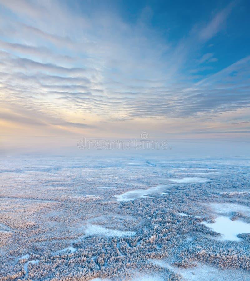 Hoogste mening van bosrivier in de winter royalty-vrije stock fotografie