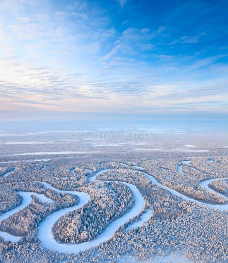 Hoogste mening van bosrivier in de winter stock afbeelding