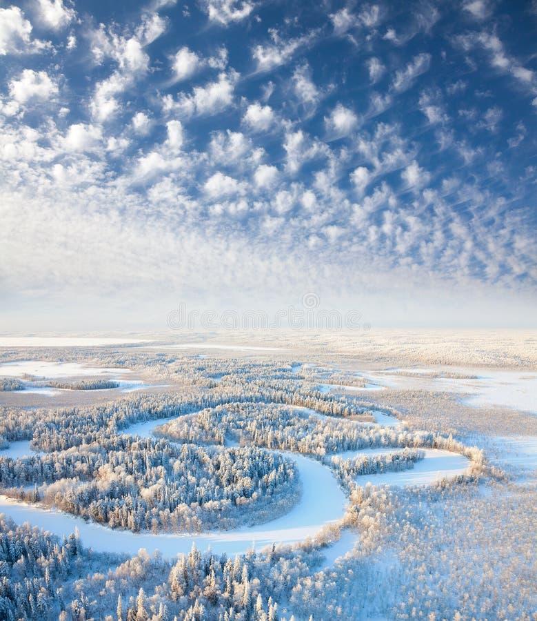 Hoogste mening van de bosrivier in de winter stock afbeeldingen