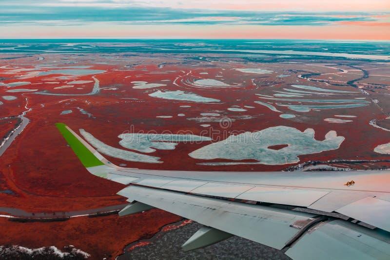 Hoogste mening van de noordelijke toendra van de vliegtuigenpatrijspoort stock afbeelding