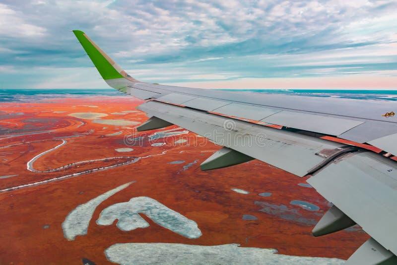 Hoogste mening van de noordelijke toendra van de vliegtuigenpatrijspoort royalty-vrije stock foto