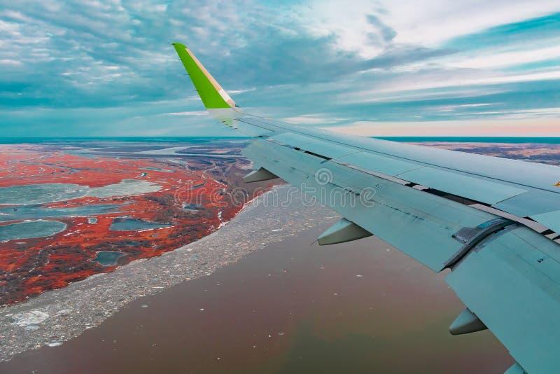 Hoogste mening van de noordelijke toendra van de vliegtuigenpatrijspoort royalty-vrije stock afbeelding