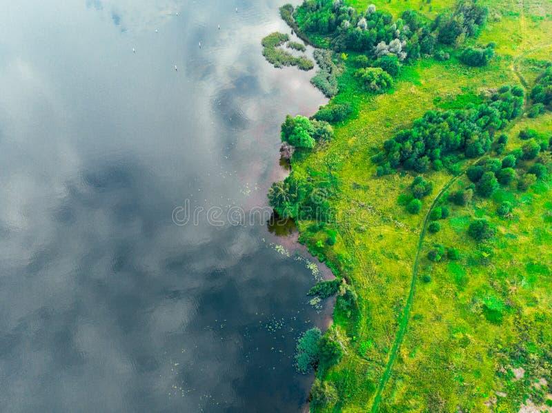 Hoogste mening van de rivierbank en groen bosrusland stock foto's
