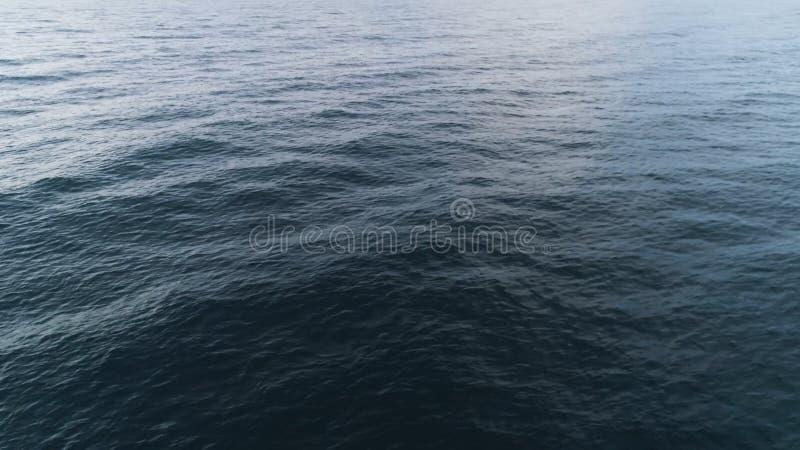 Hoogste mening van eenden die op meer drijven schot De wilde troep van eenden zwemt op meer in bewolkt weer Panorama van eenden royalty-vrije stock afbeeldingen