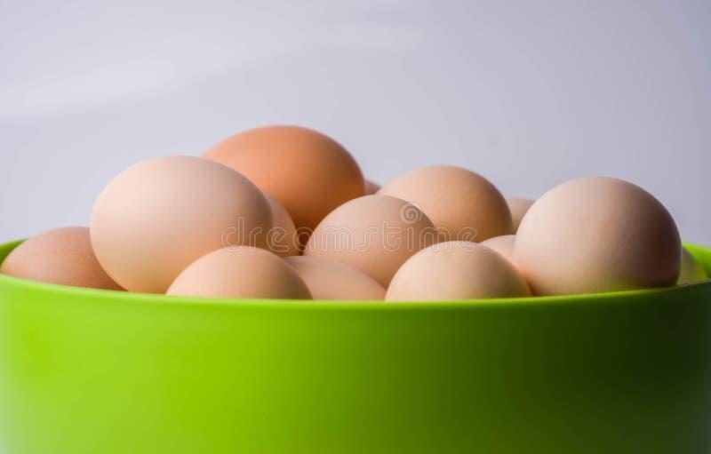 hoogste mening van eieren in gezonde komgroep, ingrediënt, het leven, macro, maaltijd, voedzame aard, nieuw, ovaal voorwerp, oud, royalty-vrije stock fotografie