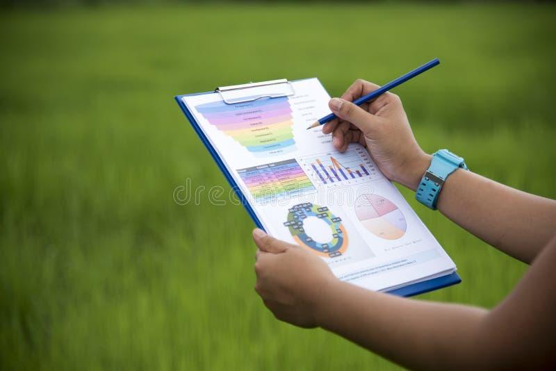 Hoogste mening van jonge werkende vrouw gebruikend laptop en lezend jaarverslagdocument op het werk Bedrijfs vrouw die bij haar b royalty-vrije stock afbeelding