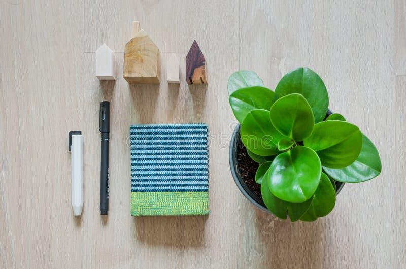 Hoogste mening van kantoorbehoeften en pepperomiainstallatie stock foto
