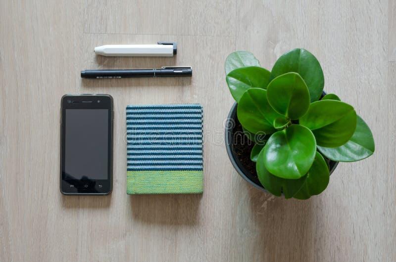 Hoogste mening van kantoorbehoeften en pepperomiainstallatie op houten vloer royalty-vrije stock fotografie