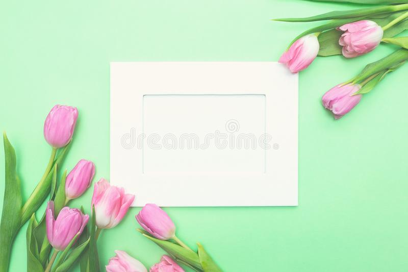 Hoogste mening van roze tulpen en fotokader op lichtgroene achtergrond met exemplaarruimte royalty-vrije stock afbeelding