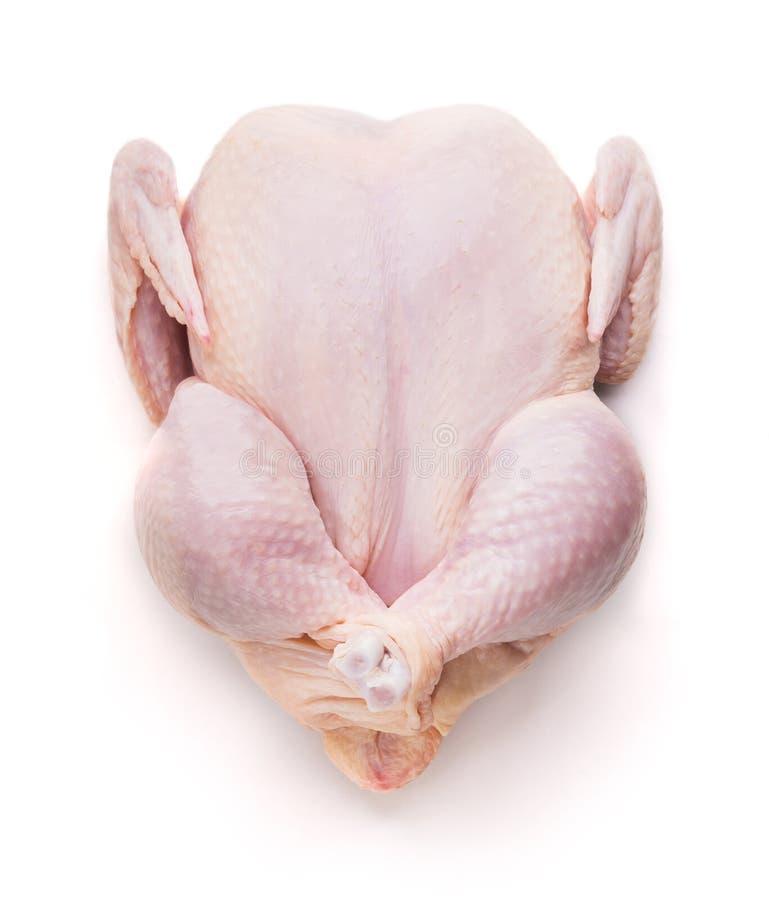 Hoogste mening van verse ruwe die kip op wit wordt geïsoleerd royalty-vrije stock afbeeldingen