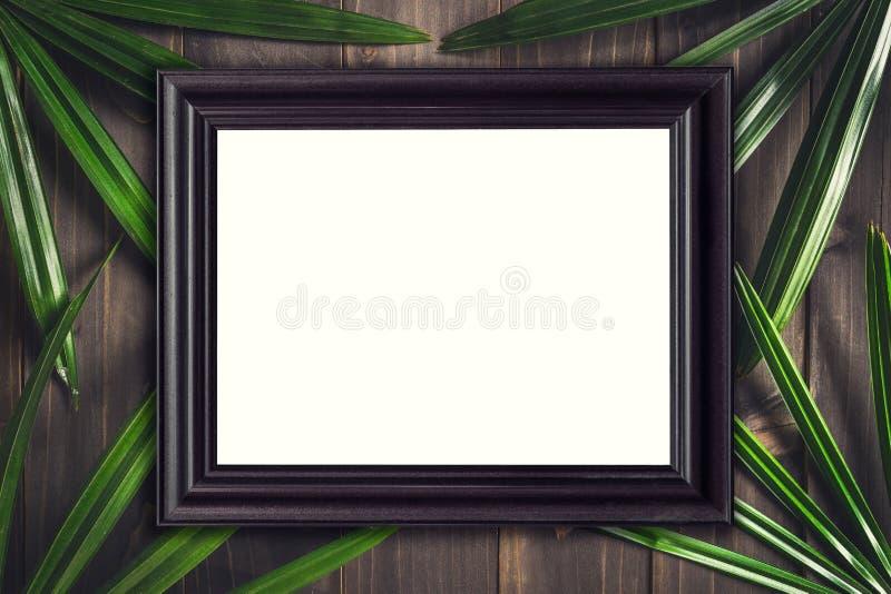 Hoogste menings houten kader en groene bladpalm tropisch op houten backgrou stock foto