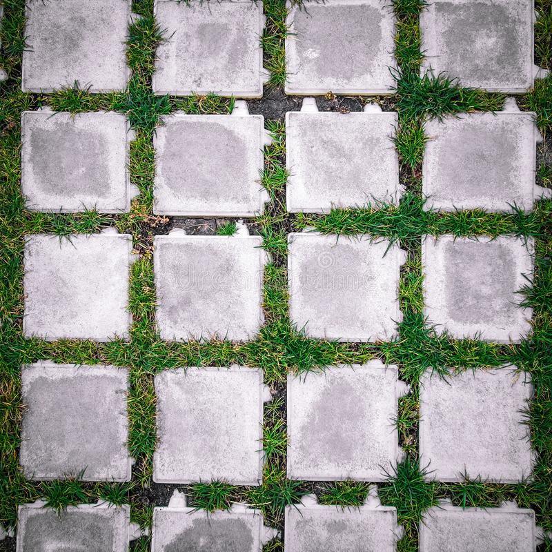 hoogste menings vierkante tegels met groen gras royalty-vrije stock afbeeldingen