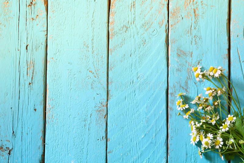 Hoogste meningsbeeld van madeliefjebloemen op blauwe houten lijst Gefiltreerde wijnoogst stock foto