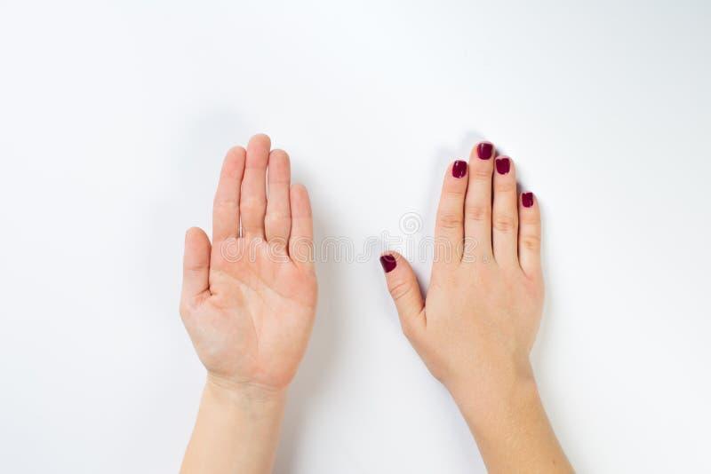Hoogste meningsfoto van de handen van de vrouw met donkere manicure royalty-vrije stock fotografie