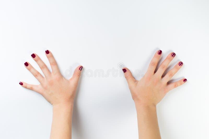 Hoogste meningsfoto van de handen van de vrouw met donkere manicure stock foto's