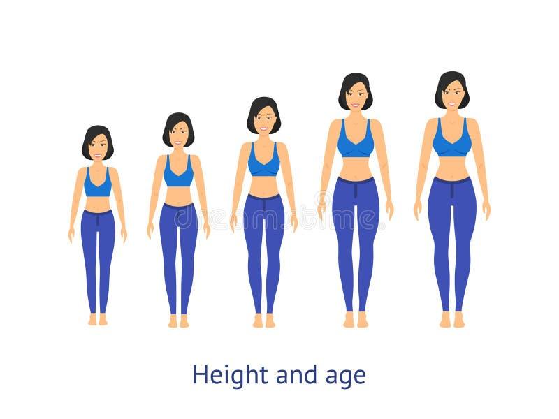 Hoogte en Leeftijdsstadium van de Groei van Meisje aan Vrouw Vector royalty-vrije illustratie