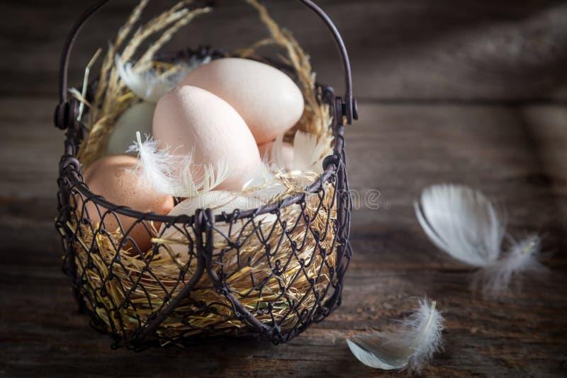 Hoogtepunt van eieren van de vitaminen de vrije waaier in de mand stock afbeeldingen