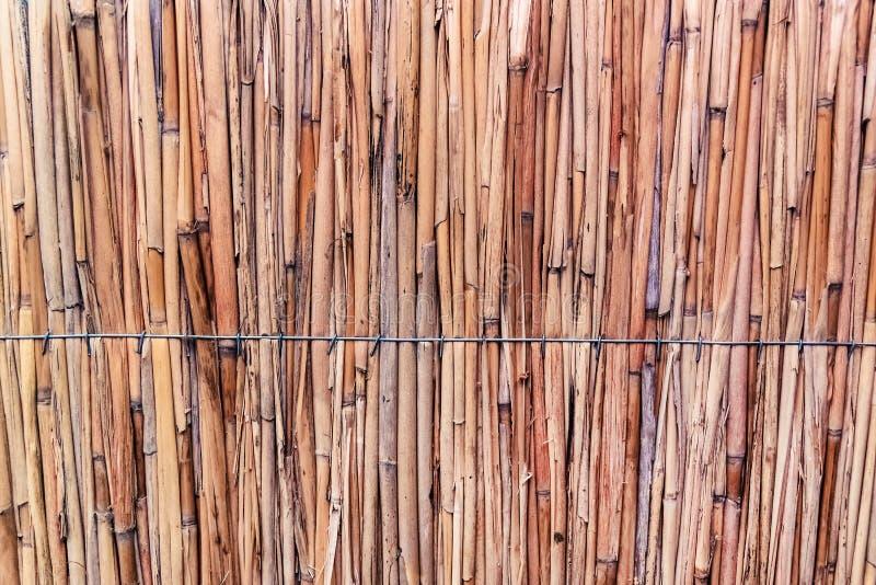 Hooi of droge grasachtergrond Met stro bedek dak voor achtergrond, droog stro of riet stock afbeelding