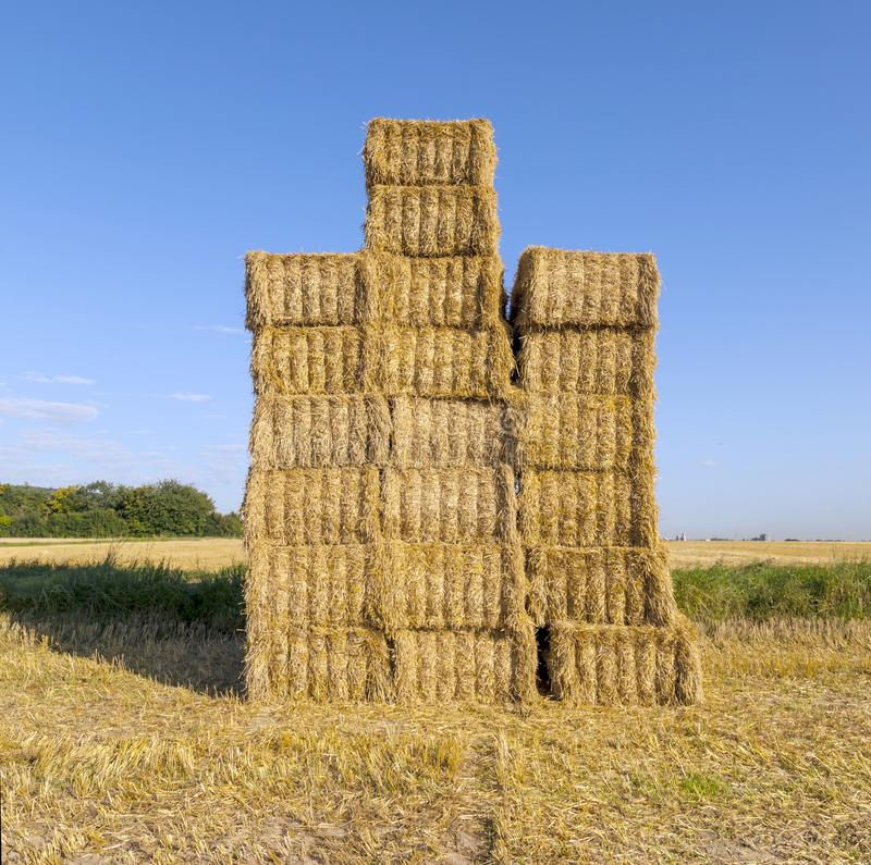 Hooibalen op een gebied na de verse oogst royalty-vrije stock foto