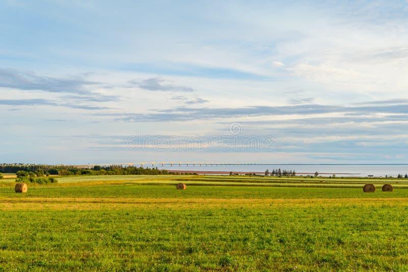 Hooibalen op een landbouwbedrijf langs de oceaan met de Federatie Bridg royalty-vrije stock foto's