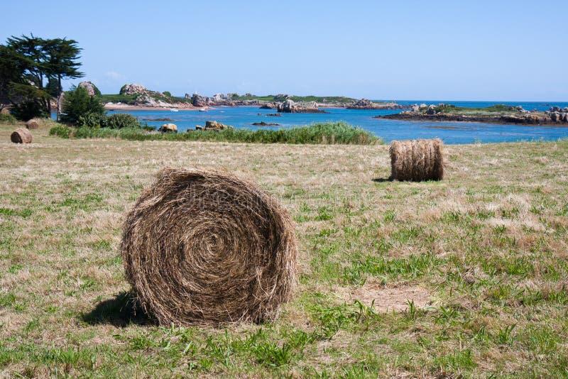 Hooiberg bij eiland Brehat in Bretagne, Frankrijk royalty-vrije stock afbeelding
