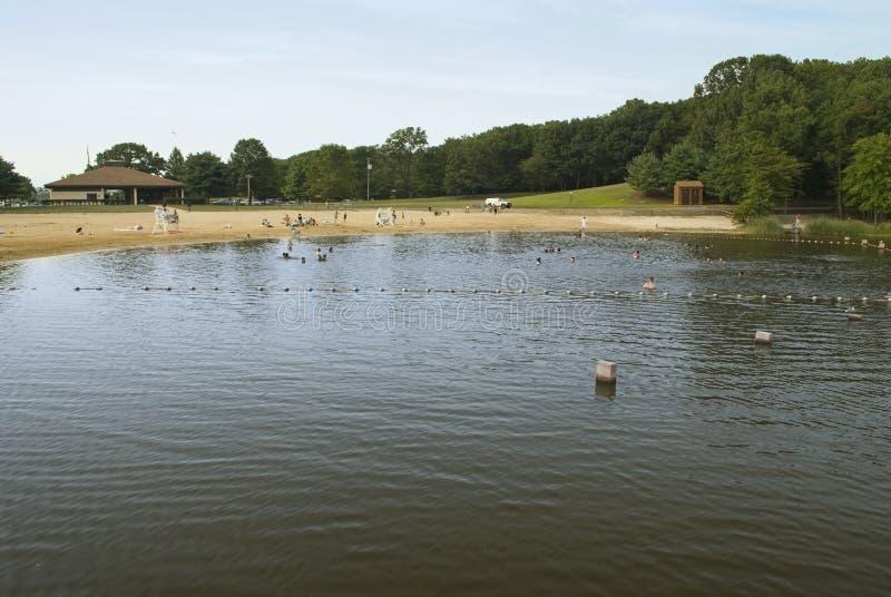 Download Hooks Creek Lake Beach Royalty Free Stock Photos - Image: 10901898