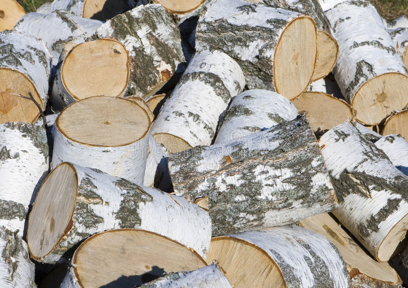 Hoop van berkbrandhout stock afbeelding