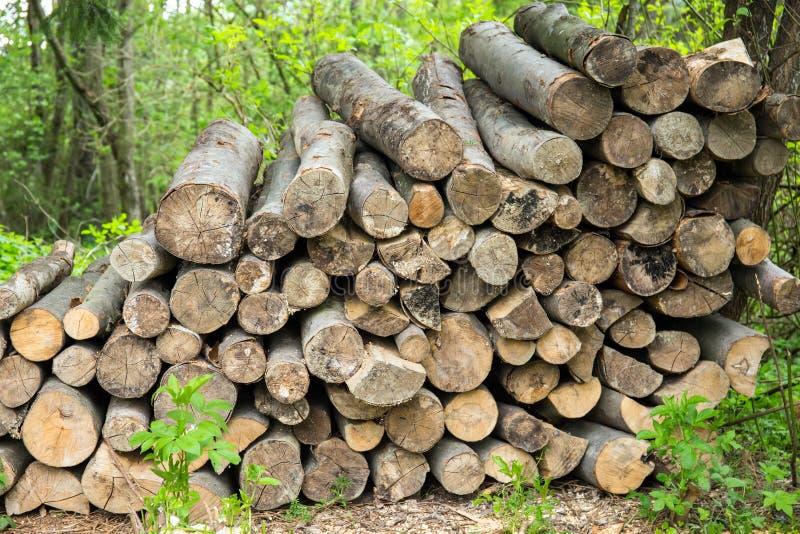 Hoop van brandhout royalty-vrije stock foto