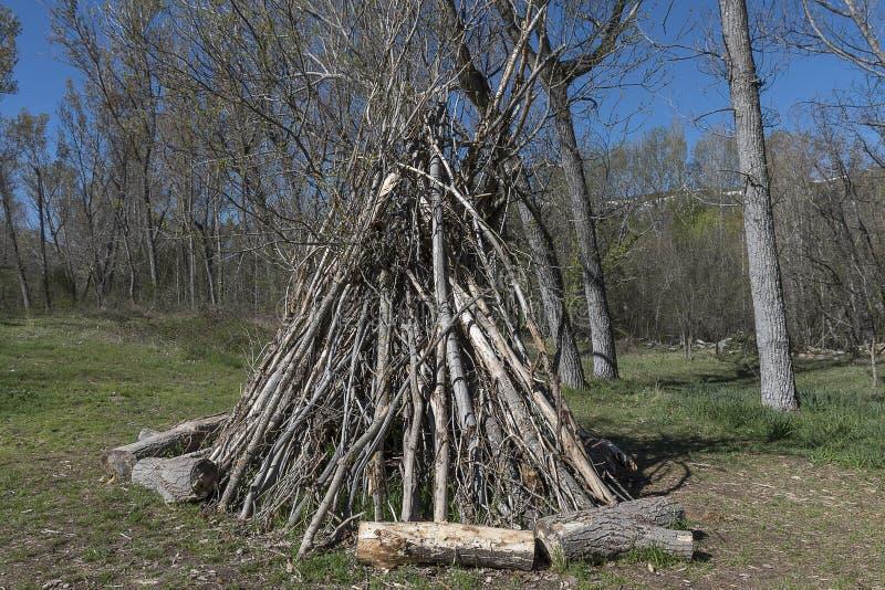 Hoop van brandhout in een bosopen plek stock afbeelding