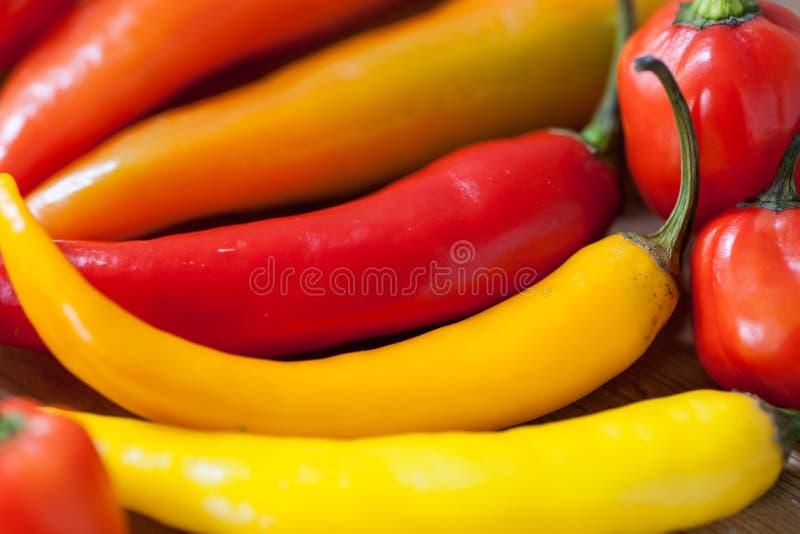 Hoop van diverse Spaanse peperpeper op een houten achtergrond Kokende ingredi?nten, spiceysmaak en natuurvoedingconcept stock afbeelding