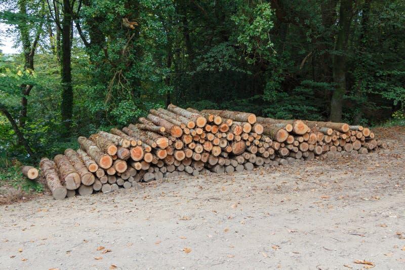 Hoop van houten logboek royalty-vrije stock afbeeldingen