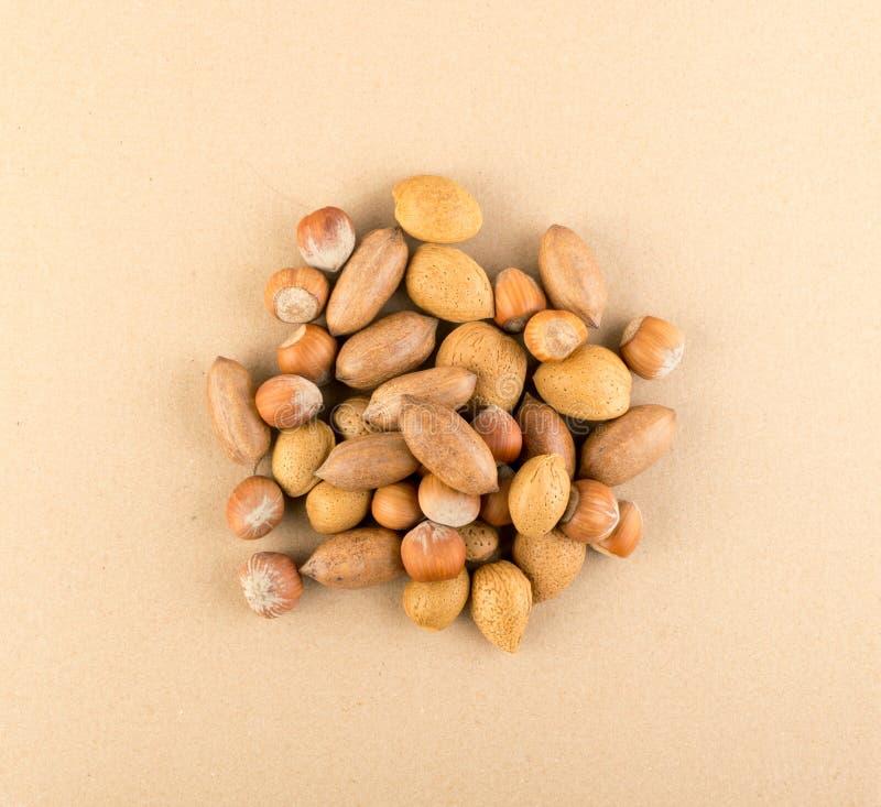 Hoop van Macadamia Noten, Hazelnoten en Amandelen in Shell royalty-vrije stock fotografie