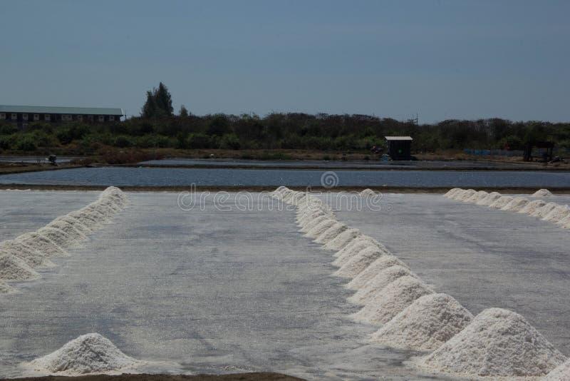 Hoop van overzees zout in zout landbouwbedrijf royalty-vrije stock foto