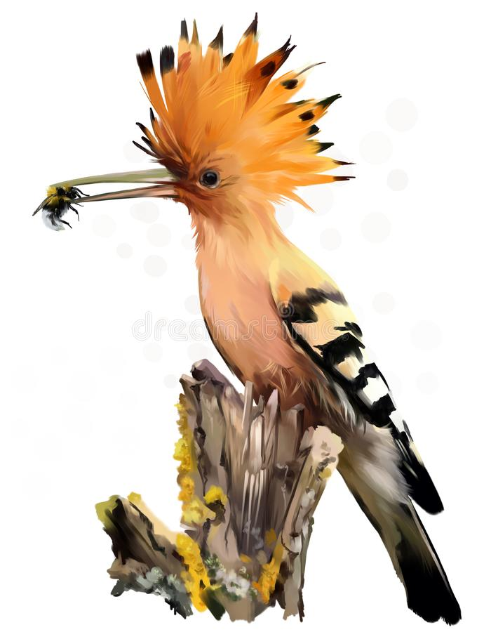 The hoopoe sits on the stump watercolor painting stock illustration