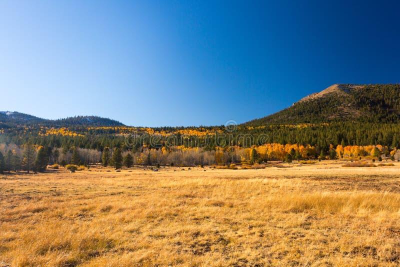 Hoopvallei, Californië, Verenigde Staten stock afbeelding