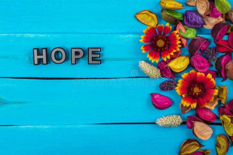 Hoopwoord op blauw hout met bloem stock fotografie