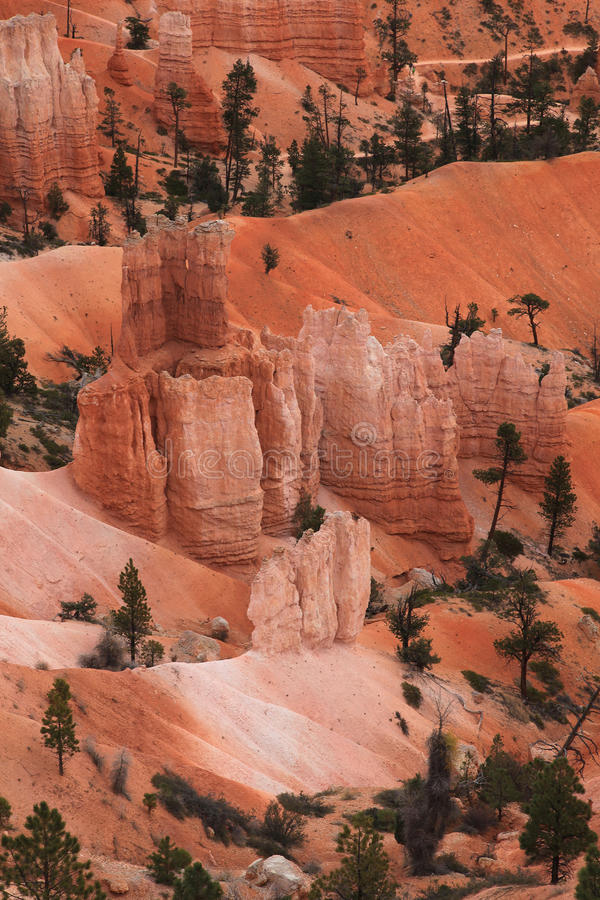 Free Hootoo In Bryce Canyon National Park Stock Photos - 11455843