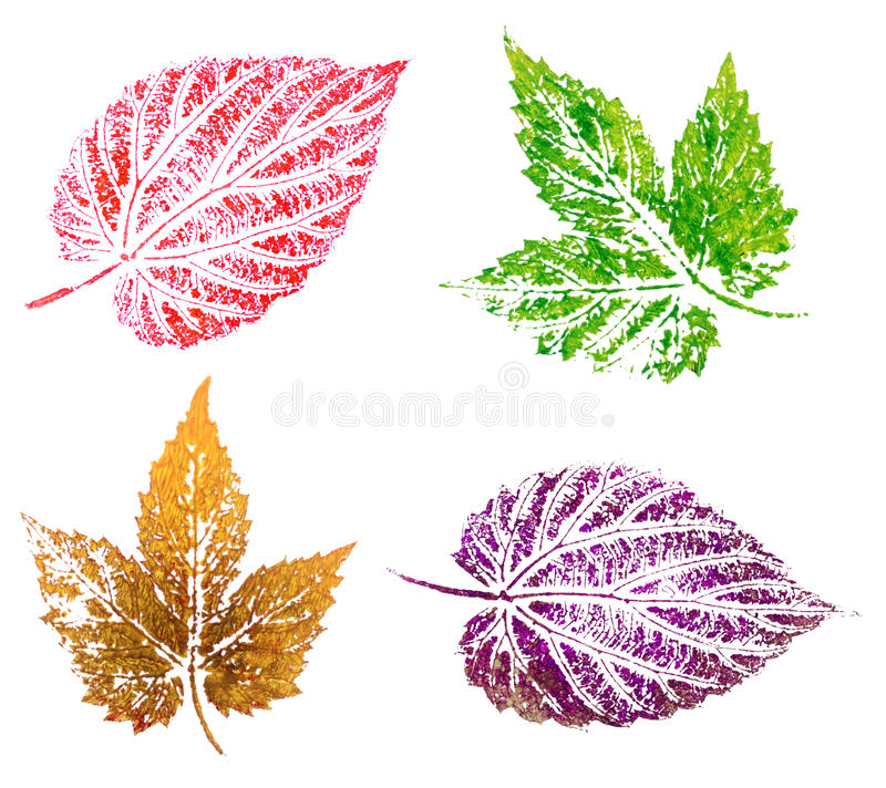 Download Hop leaves, painting stock illustration. Image of life - 24350195