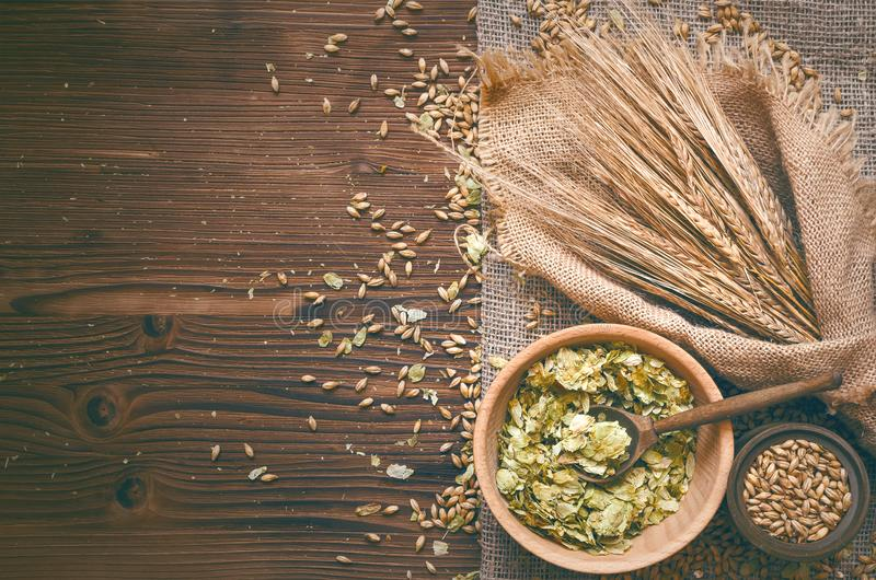 Hop and malt. Beer ingredients. royalty free stock photography