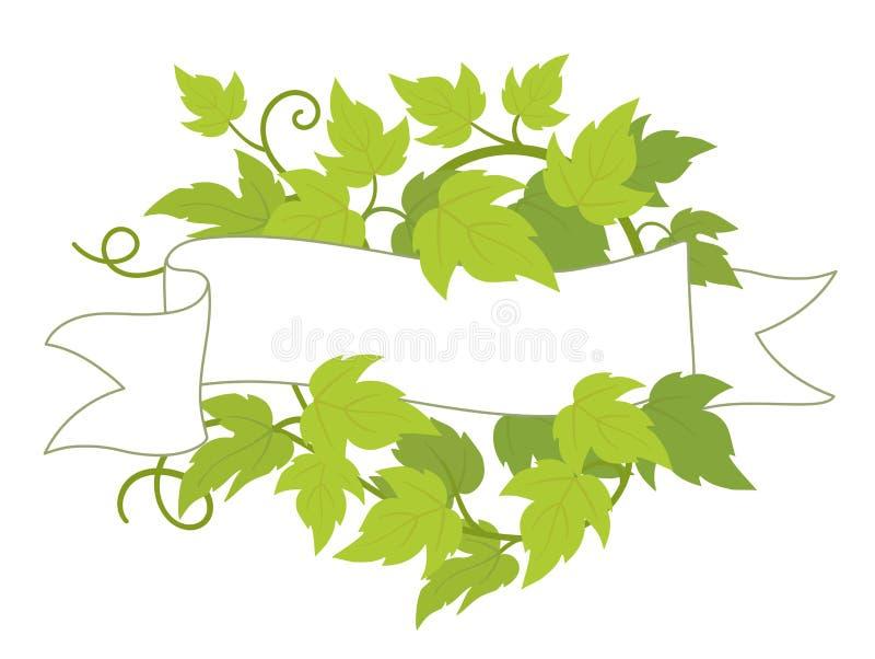 Hop plant frame flag label. Badge border frame decor. Copy space for text name or logo. Hop green leaves. Vector flat Illustration vector illustration