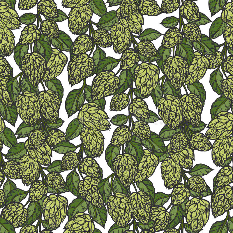 Hop vector seamless pattern stock illustration